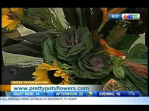Pretty Pots Flowers Youtube