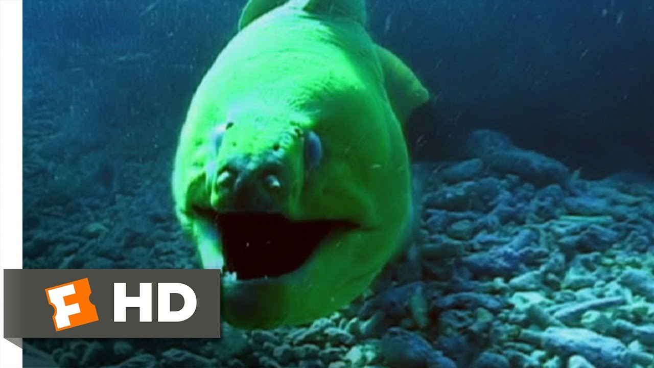 Open Water 2 Movie
