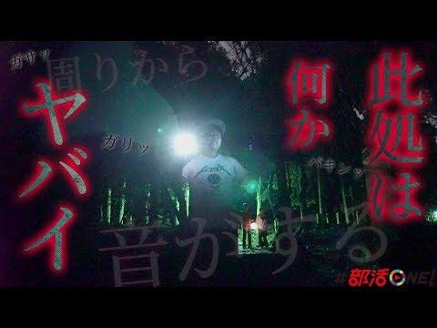 心霊|千葉県屈指の心霊スポット達磨神社に独りで肝試し|オカルト部