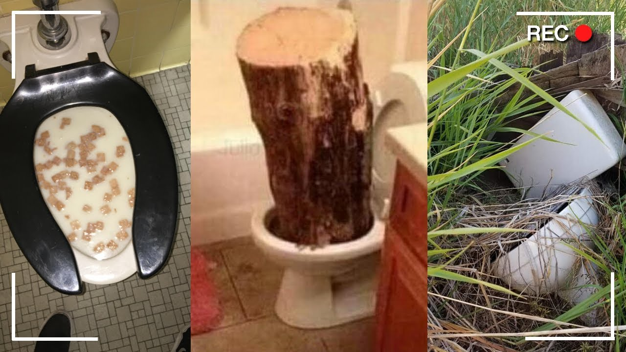 Weird Images Of Toilets 6