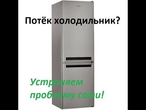 Холодильники no frost, frostfree от 8 320 грн!. ✓сравнить цены и выгодно купить с помощью hotline. ✓обзоры, вопросы и отзывы реальных.