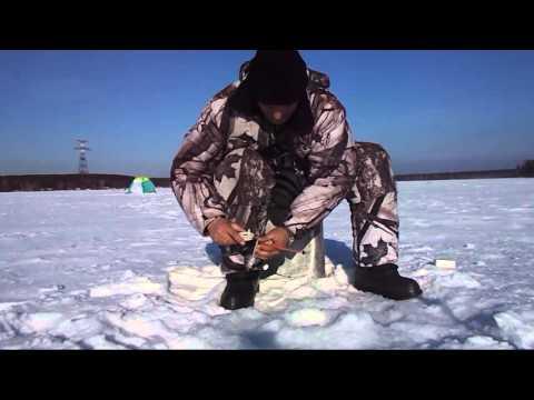 последние новости о рыбалке на белоярке