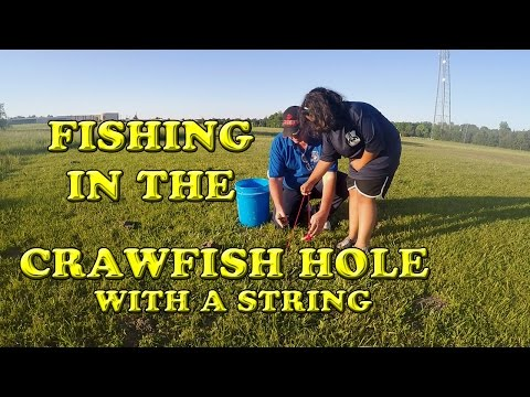Fishing In A Crawfish Hole With A String