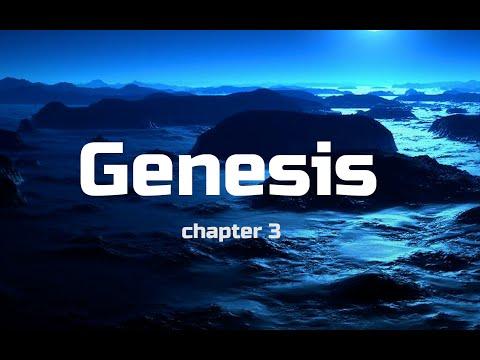 Guide Genesis III Thru The Bible