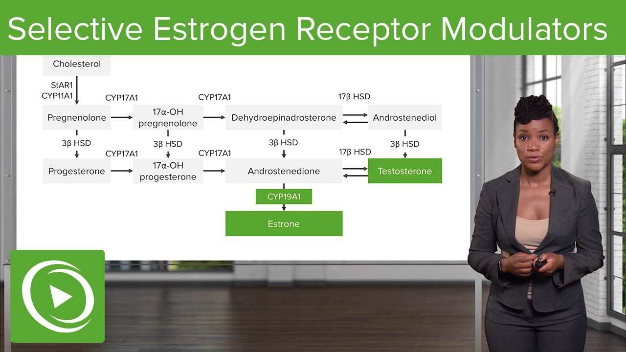 Selective Estrogen Receptor Modulators (SERMs) – Gynecology | Lecturio