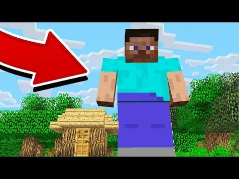 THE WORLD'S LARGEST MINECRAFT PLAYER!