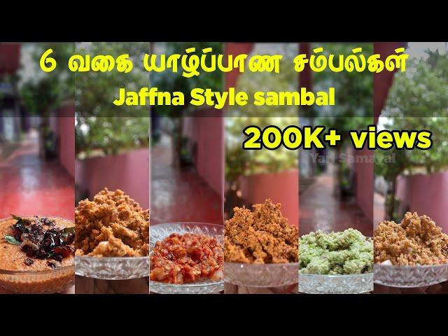 6வகை யாழ்ப்பாணத்து சம்பல்கள் | 6 types Jaffna Style sambal | Jaffna style coconut sambal | sambal