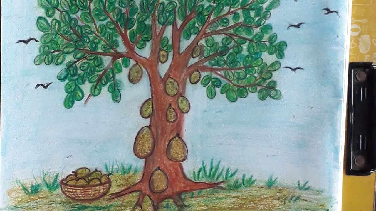 How To Draw Jack Fruit Tree Youtube Jackfruit trees yield the largest fruits of all fruit trees, with some weighing well over 50 lbs. how to draw jack fruit tree