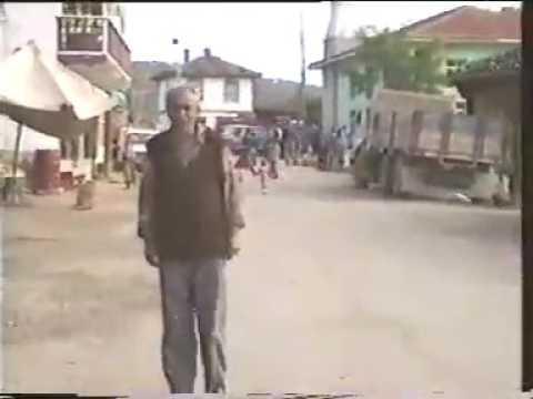 Saraydüzü 1993