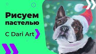 Рисуем новогоднюю собачку! Французский бульдог сухой пастелью! #Dari_Art