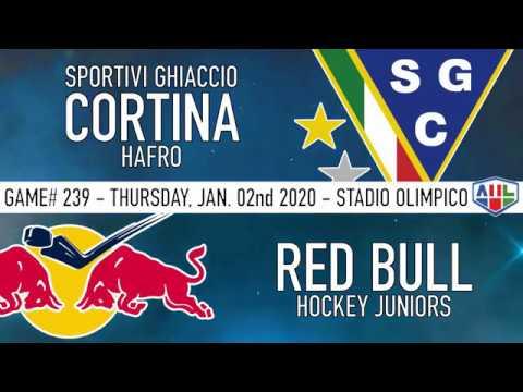 SG Cortina Hafro - Red Bull Hockey Juniors