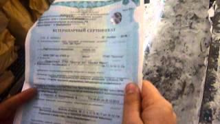 Выгрузка свежемороженой рыбы(, 2014-01-24T06:04:13.000Z)