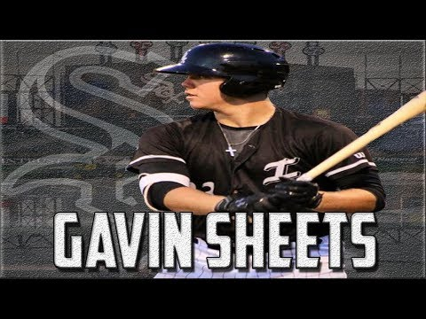 Gavin Sheets Highlights   Chicago White Sox 1B Prospect