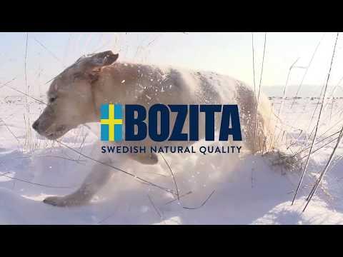 Bozita schwedisches Hundefutter | tiierisch.de