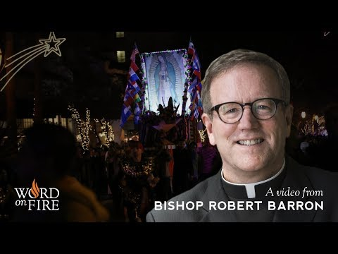 Bishop Barron Procession for Our Lady of Guadalupe