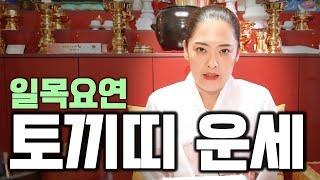 (소문난점집)신점으로 보는 2020년 '토끼띠 하반기 운세' 일목요연.
