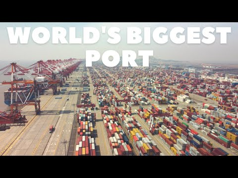 Port of Shanghai - World's Busiest Container Port | Checking