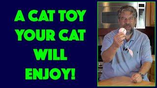 FEEKO Interactive Cat Toy  DEMO + REVIEW