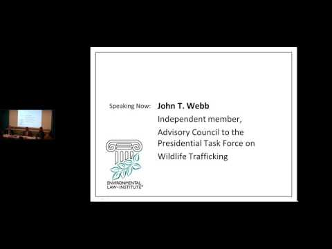 Representing Wildlife Whistleblowers: Technical Skills for Lawyers