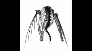 Lotic - Underneath