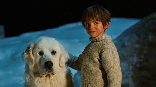 男孩本以为它是只土狗,洗完澡才发现是只大白熊。 欢迎订阅说书女孩。