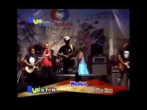 Wedhus [Dangdut Koplo 2014]