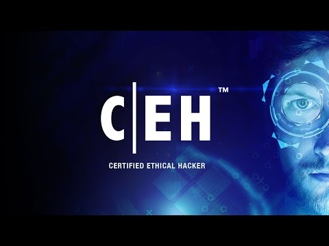ceh v8 complete training torrent