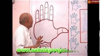 PALMISTRY PART   100 IN HINDI