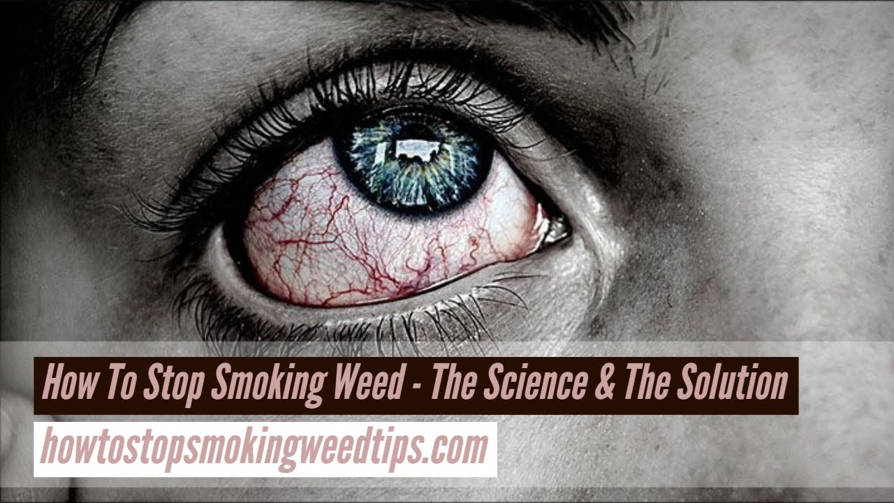Cannabis Addiction   Cannabis Withdrawal Syndrome - How To