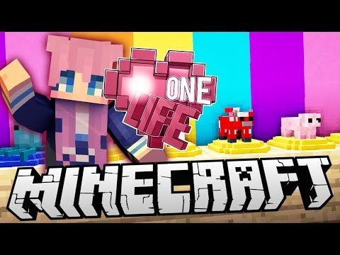 Kawaii Collectibles | Ep. 13 | Minecraft One Life 2.0