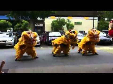 CHINESE LION Dance Gangnam Style