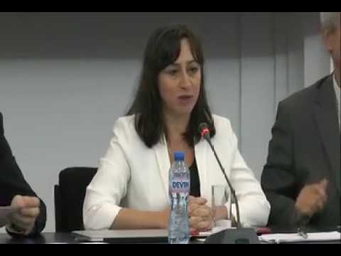 A. SINC, M. UDROIU, M. DRILEA - Urmarirea penala