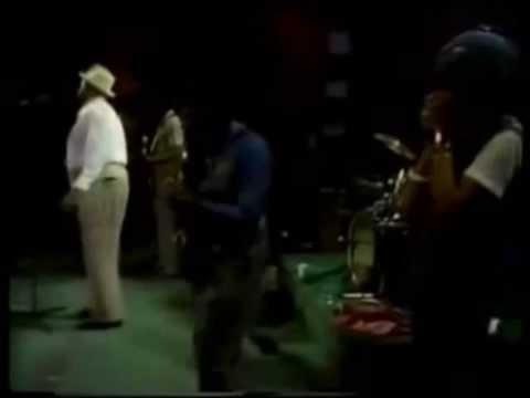 Willie Dixon Blues Band (Sugar Blue Harmonica ) - Wang Dang Doodle & I Got My Mojo Working (Live)