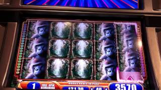 MEGA BIG WIN Queen of the Wild Slot Machine Bonus Round Free Spins