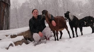 HOMESTEADING IN THE WINTER! - Is It Wor...