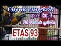Cucak Cungkok Etas 93 Full Tembak Ngebren Tembakan(.mp3 .mp4) Mp3 - Mp4 Download