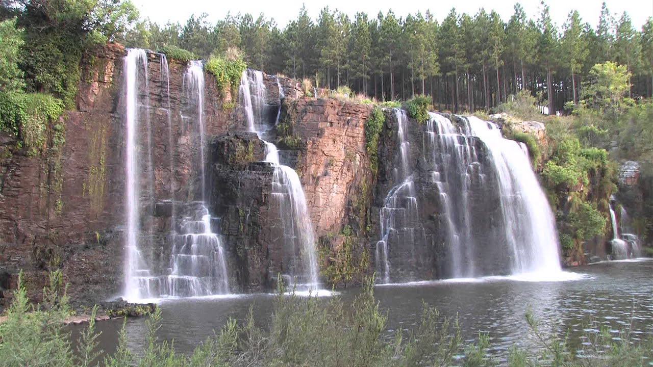 forest falls Instantly search and view photos of all homes for sale in forest falls, ca now forest falls, ca real estate listings updated every 15 to 30 minutes.