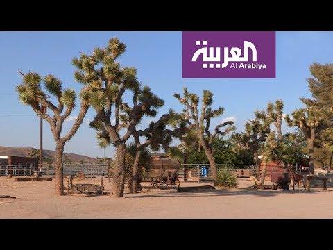 السياحة عبر العربية | بالم سبرينغز مقصد نجوم هوليوود  - نشر قبل 4 ساعة
