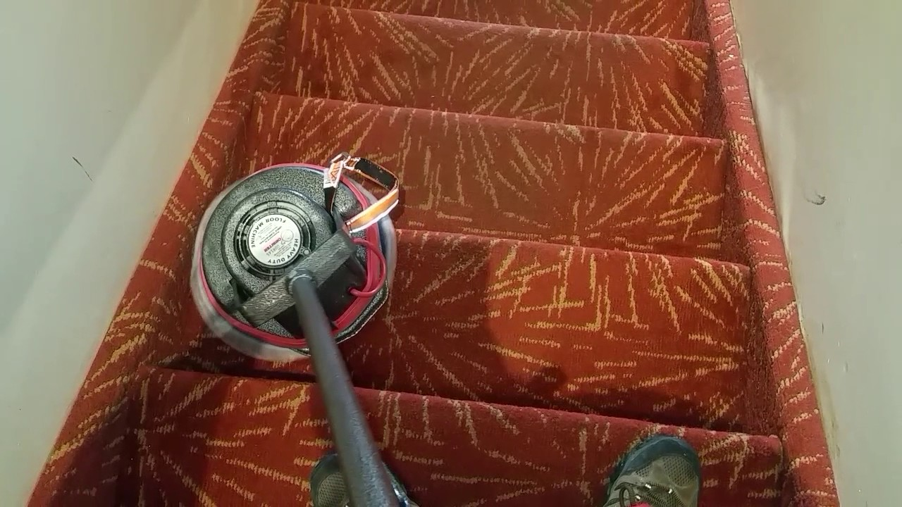 Bronx Westchester Ny Carpet Rug Cleaning Stairs Oreck