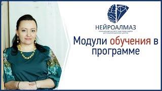 Модули обучения в программе подготовки нейропсихологов