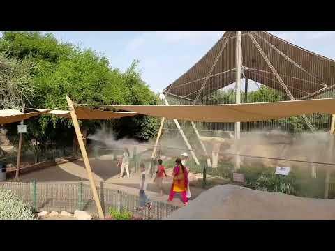Al Ain Zoo ( منتزه العين للحياة البرية )2017
