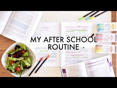 My After-School Study Routine