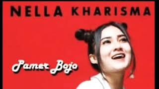 Pamer Bojo - Nella kharisma ( video lirik )