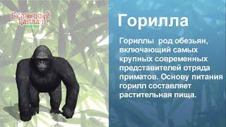 Изучаем слова. Животные и предметы в 3D. Learning 3d world.
