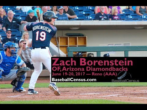 Zach Borenstein, OF, Arizona Diamondbacks — June 19-20, 2017