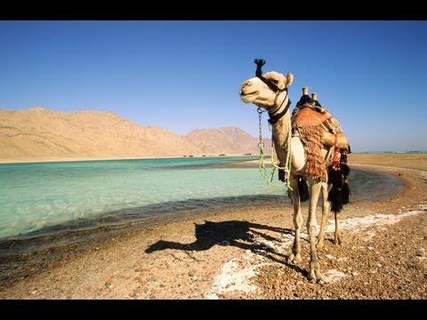 Paket Tour Kairo Mesir Bersama Cheria Tour Travel
