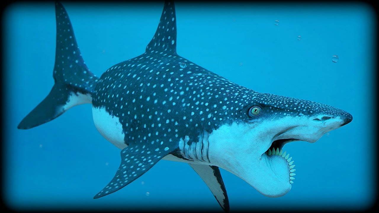 Image result for Helicoprion