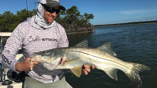 Inshore Slam All Caught In 1 Spot on 1 Lure [Post-Cold Front Fishing Lesson]