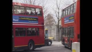 'Love for All' Bus Campaign for Peace