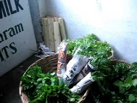Organic farming and small scale market